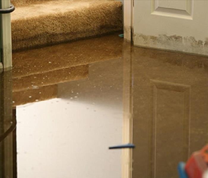 Water Damage Water Extraction & Remediation Process