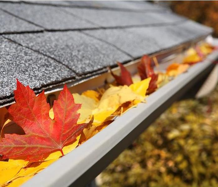Fall leaves can get stuck in gutters and result in water damage