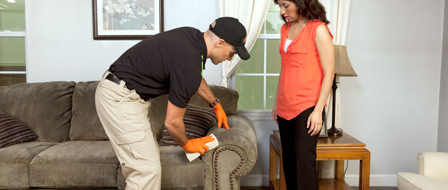 Middleborough, MA carpet upholstery cleaning
