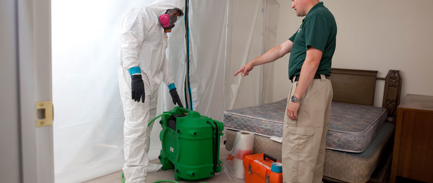 Middleborough, MA mold removal process